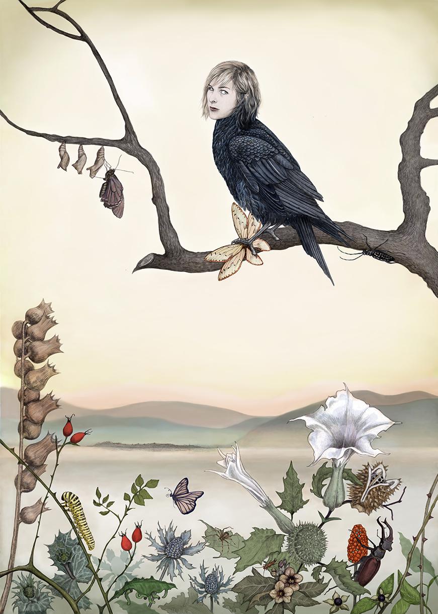 Illustration: Johanna Magoria