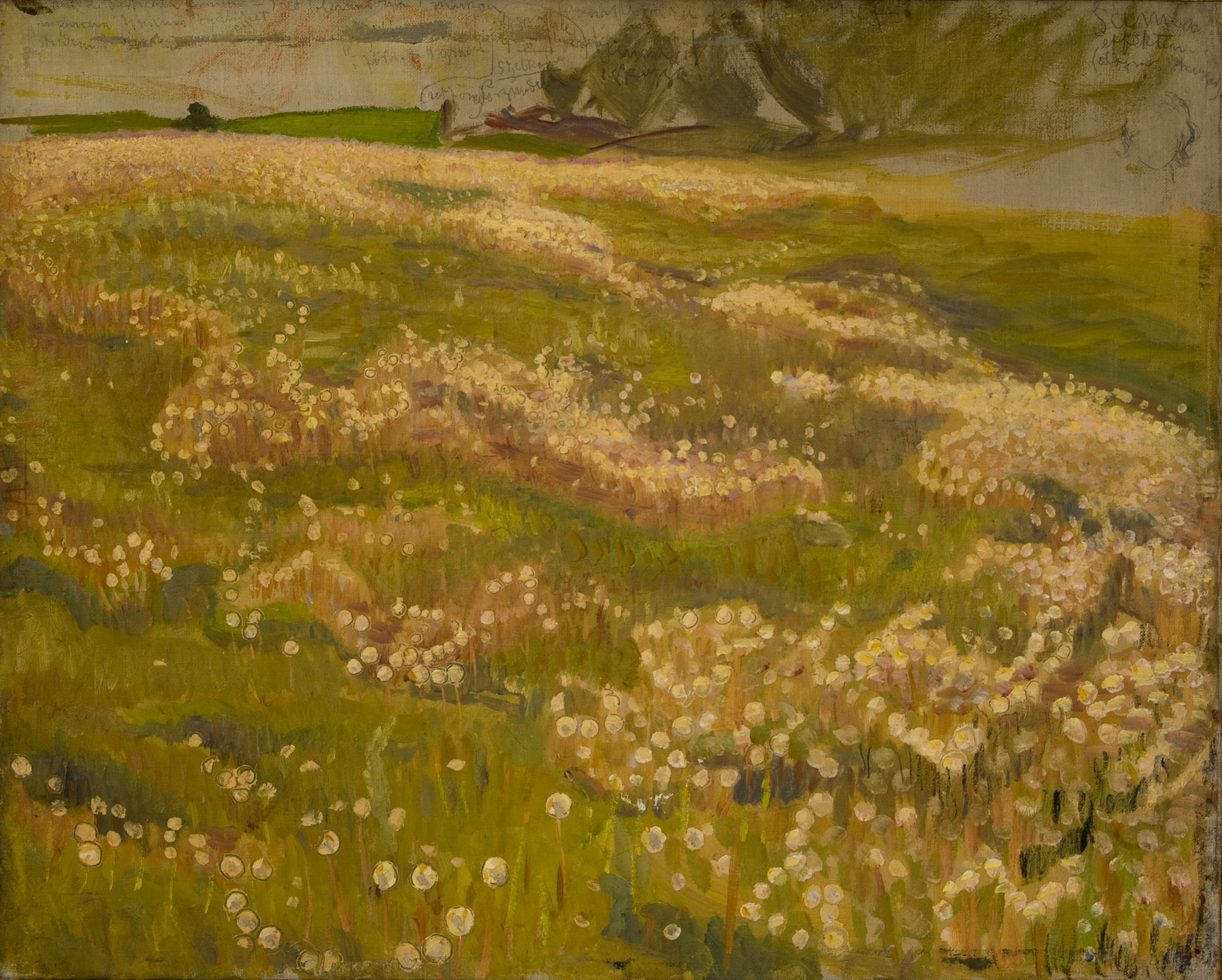Richard Bergh: Maskrosäng, skiss, 1897